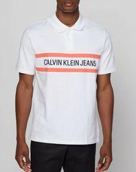 Polo Strip blanc - Calvin Klein - Modalova