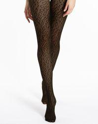 Collants léopard Fashion Bianca 30 deniers - Le Bourget - Modalova