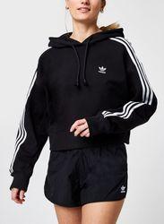 Short Hoodie par adidas originals - adidas originals - Modalova