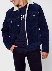 Pinner Dlx Cord par Pepe jeans - Pepe jeans - Modalova