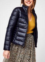 Back Logo Elastic Moto Jacket par - Calvin Klein Jeans - Modalova