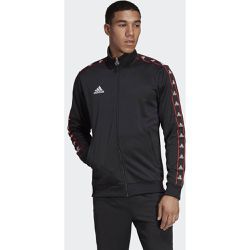 Veste TAN Tape Clubhouse - adidas Performance - Shopsquare