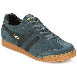 Chaussures Gola HARRIER - Gola - Modalova