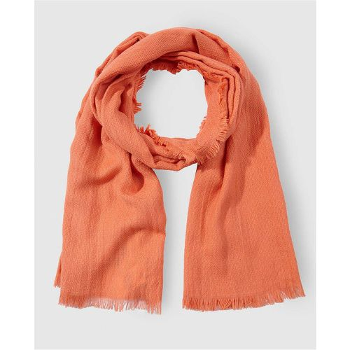 Foulard en coton basic - JO & MR. JOE - Shopsquare